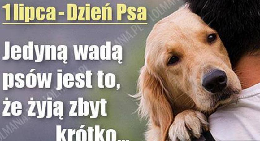 1 Lipca -Dzień Psa
