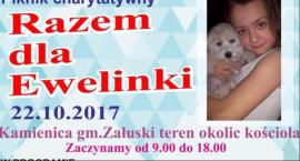 Piknik Charytatywny - Razem dla Ewelinki