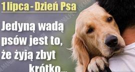 1-lipca-dzien-psa